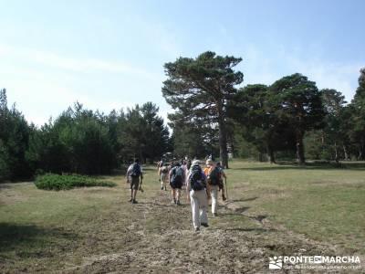 Valle del Lozoya - Camino de la Angostura;senderismo segovia viajes de un dia